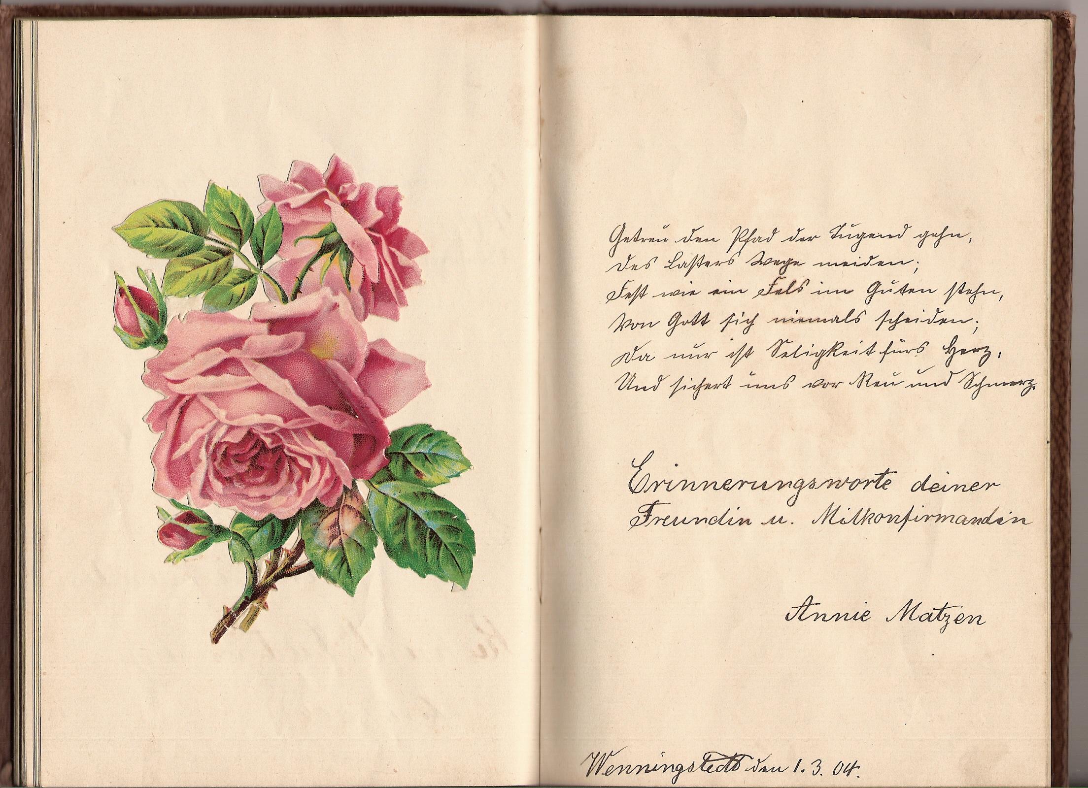 poesiealben-sprüche (17/33)